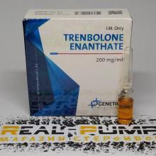 Trenbolone Enanthate (Genetic)