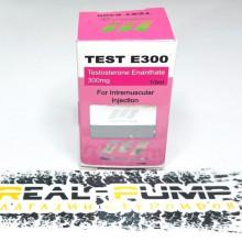 Test E300 (Norman)